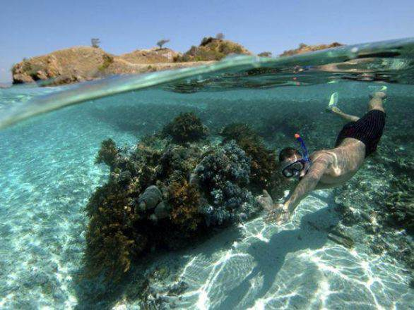 Snorkeling, Diving and Scuba diving